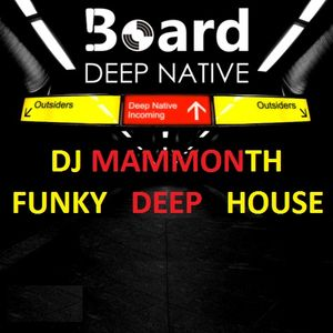 DJ MAMMONTH - FUNKY HOUSE 2012