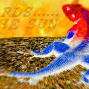 Lizards in the Sun (April 2015/01)