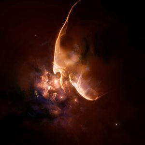 Supernovae 2010