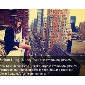 Steban Liebg - Sleazy Purpose Promo Mix (Dec 28)