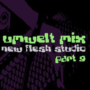 Umwelt@Newflesh Studio Part 09 (2009)