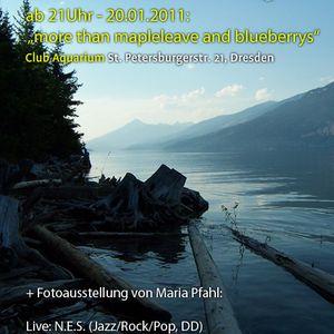 Waterlounge-Ausstellungseröffnung 20.1.11 // N.E.S. (Live)
