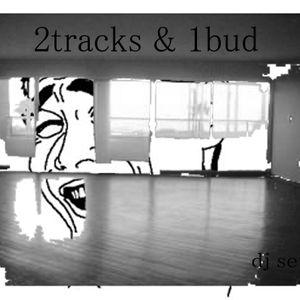 2tracks1bud