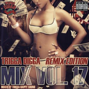 TRIGGA DIGGA MIX VOL. 17 - REMIX EDITION