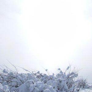 memoide - acoustic drops of mist pt.1