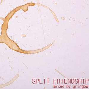 Podcast #34: Split Friendship