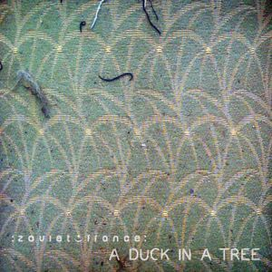 A Duck in a Tree 2014-05-30 | Steel Tide and Storm Blue