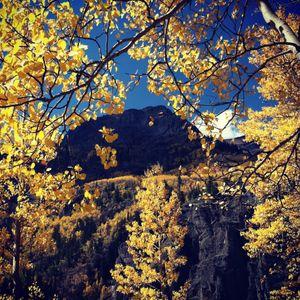 Autumn 2012 Mix