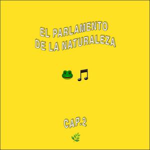 EL PARLAMENTO DE LA NATURALEZA - EL SAPO DE CAÑA Y LAS FRONTERAS SONORAS