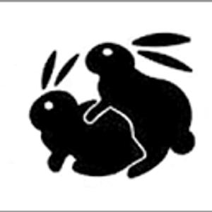 bunny FN