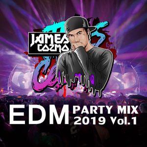 EDM PARTY MIX 2019 Vol.1