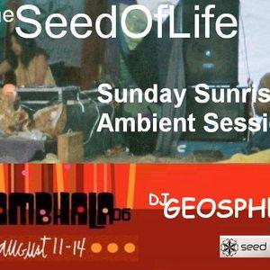 GEOSPHERE Shambhala Music Festival dj set 2006