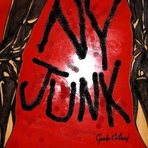 NEW YORK JUNK Punk-Rock  with real emotions.Puttin' the soul back into The City!