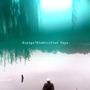 Elektrified Tape 1