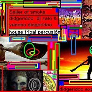 bongos house & didgeridoo by dj san zalo