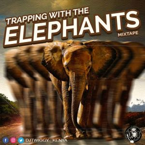 TRAPPING WITH THE ELEPHANTS MIXTAPE