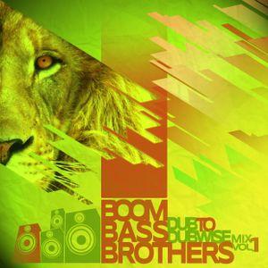 BoomBassBrothers - Dub to Dubwize MIX (enero 2013)