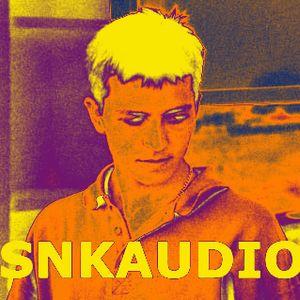 Liquid drum and bass sessions vol 32 SNKAUDIO
