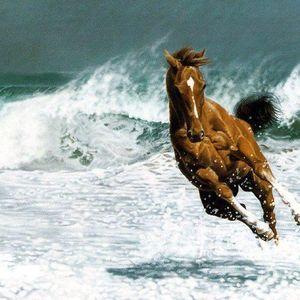 Caspian Wave