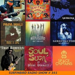 SURFINBIRD RADIO SHOW # 345 - BLUES WITH A FEELING