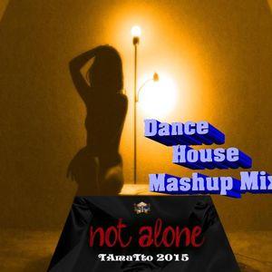 Not  Alone (TAmaTto 2015 Dance House Mashup)