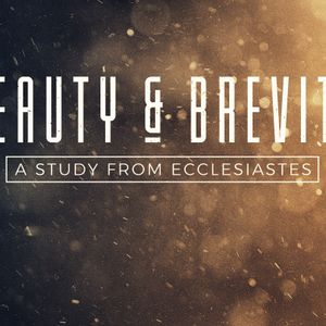 Beauty and Brevity: Wrestling with Injustice | March 10, 2019