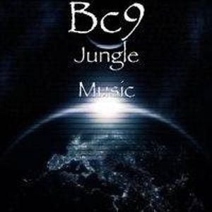SKYLIGHT RADIO 2 B.C.9
