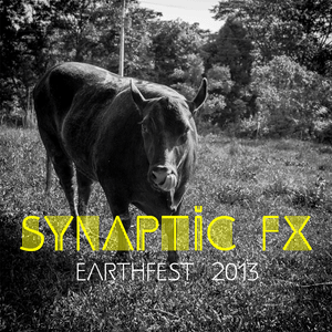 Synaptic FX - Earthfest 2013