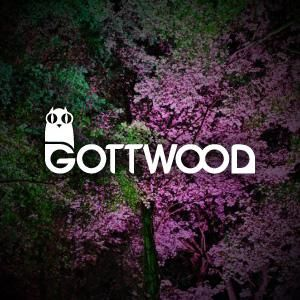 DJACQUES LIVE @ GOTTWOOD FESTVAL 2010 limited by the goverment