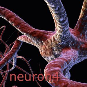 Neuron4