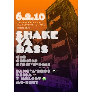Shake Ya Bass - Part 2 - T Melody + Mc Shot