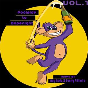 Roy Rada & Sonny Filhinho Presents - From Poolside To Dopenight Vol.1