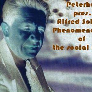 Peterhol9 - Alfred Schutz's Phenomenology Of The Social World [2010]