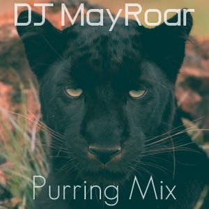Purring Mix