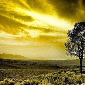 Neimis_B._-_Yellow_Rainbow-2012.03.07