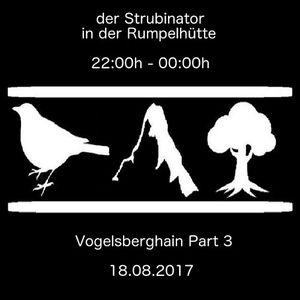 der Strubinator@Vogelsberghain Part 3 - in der Rumpelhütte von 22-00 - 18.08.2017