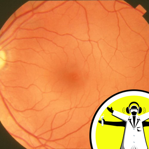 Repairing the Retina and Spinal Cord