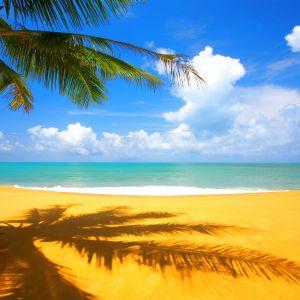 Dj El Dave Dream On The Beach