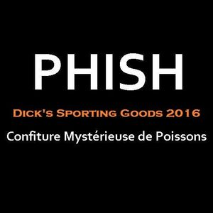 Phish Dick's 2016