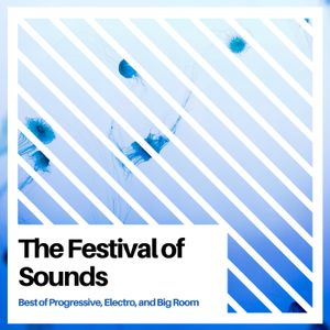 The Festival of Sound Vol. 1 (Best of Progressive and Electro and Big Room)