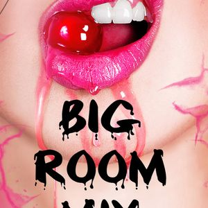 Big Room Mix 104
