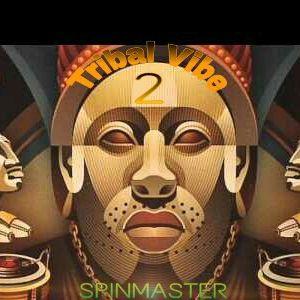 DJ SPINMASTER - Tribal Vibe 2
