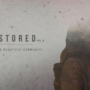 The Worshipping Community (Audio)