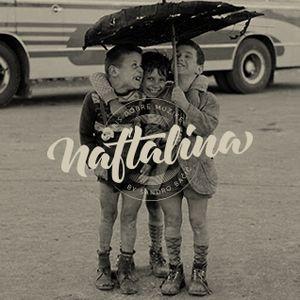 NAFTALINA - 256. emisija