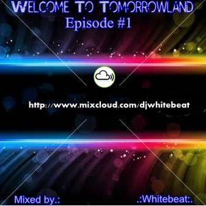 .:Whitebeat:. - Welcome To Tomorrowland 001