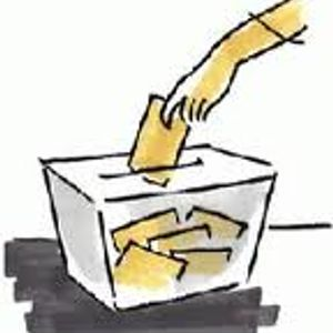 Curiositats electorals