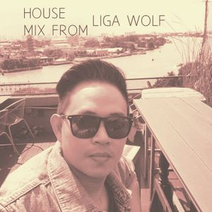 HOUSE MIX FROM LIGA WOLF