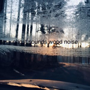 Ghost Sounds Wood Noise #15 - Chra