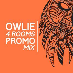 Owlie @ 4 Rooms