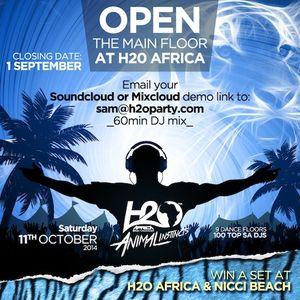 H2O Africa 2014 Demo - Tsume